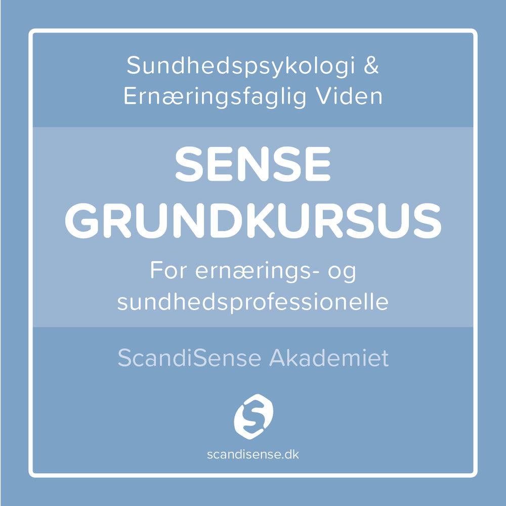 For dig, som er ernærings- eller sundhedsfagligt uddannet   Bliv introduceret til teorien bag Sense, så du kan supplere din praksis med vejledning efter Sense-principperne.