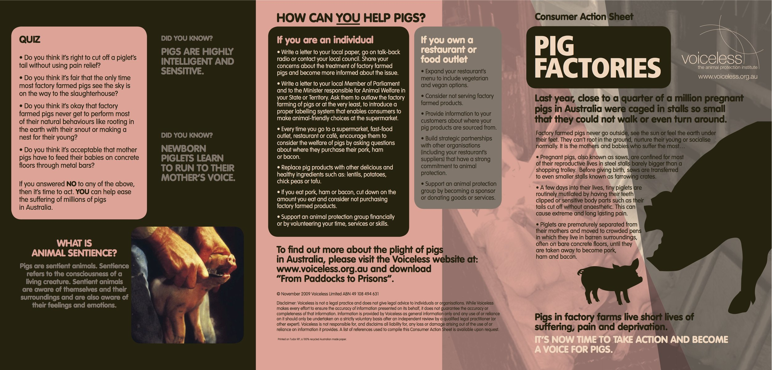 Pig brochure JPEG
