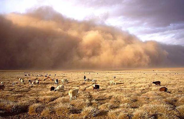 Image_2_Alashan_dust_storm