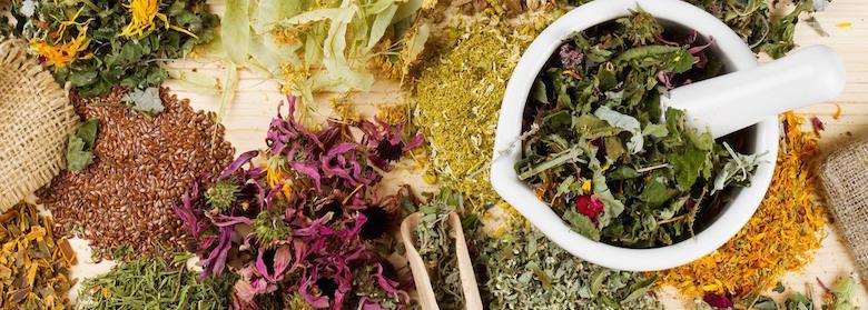 herbs-teas-herbal-remedies-1400x500.jpg