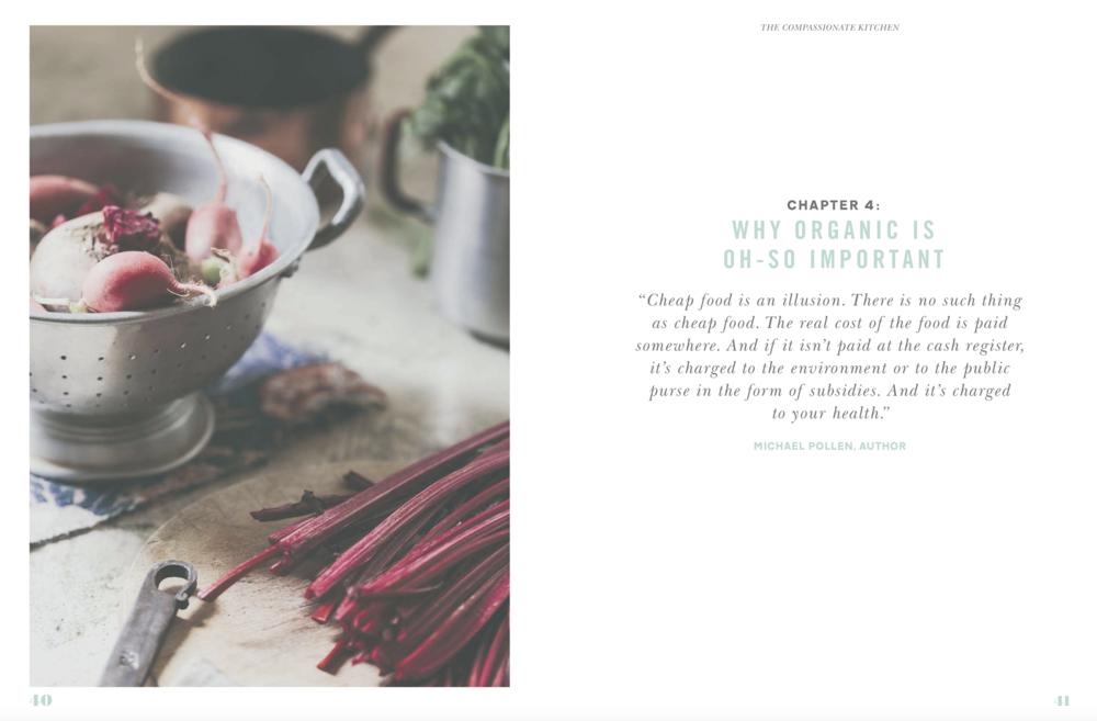 The-Compassionate-Kitchen-5.jpg