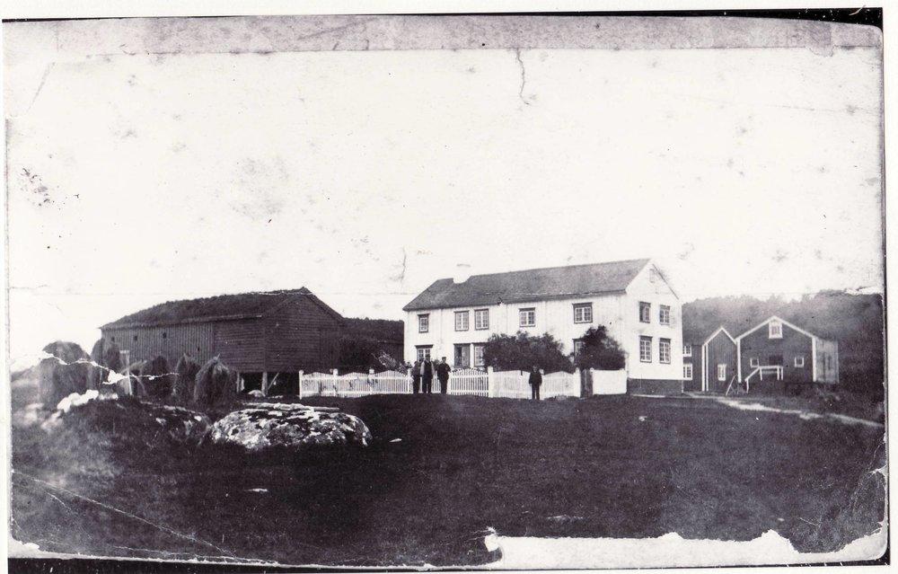 Havn 1875.JPG