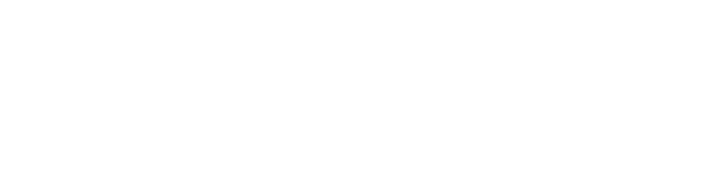 vitruvian.png