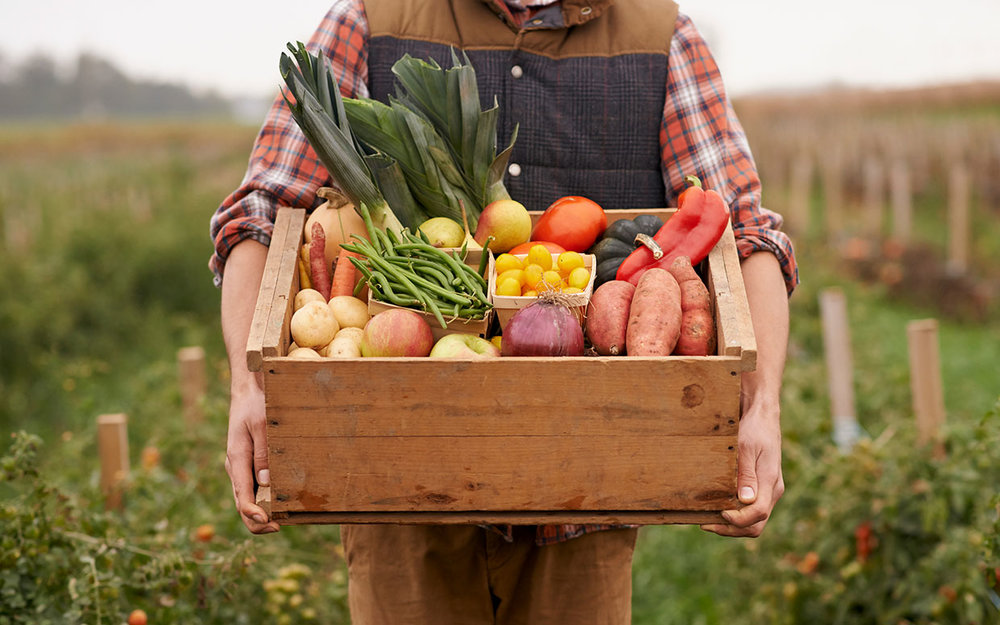 meal-delivery-kits-ftr.jpg
