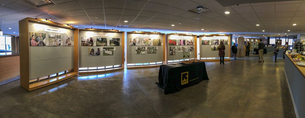 IRC New Roots Photovoice Stakeholder Meeting 20190126 – 2.jpg