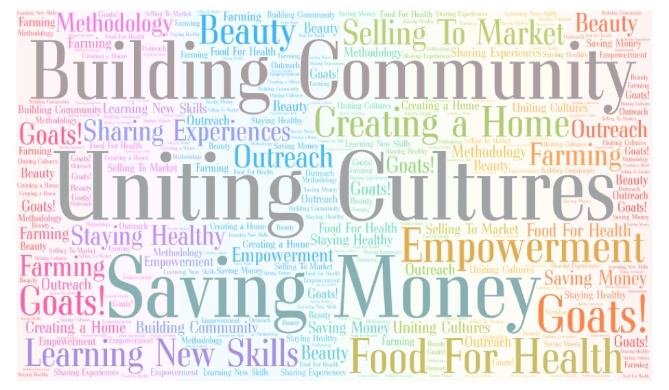 Word Cloud of concepts identified by the PhotoVoice process and community response to the exhibit.