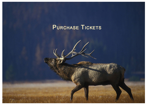 Elk-WB-Purchase-Tickets.jpg