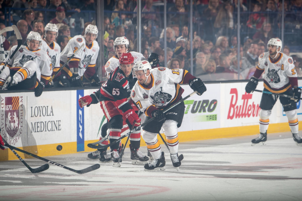Brooks Macek (#17) skate up ice during Saturday's game. Photo credit: Chicago Wolves