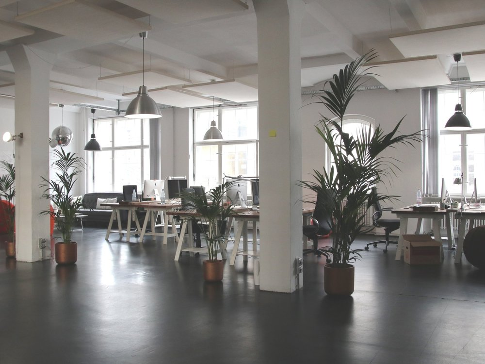 shared-office-space-potted-standing-plants.jpg