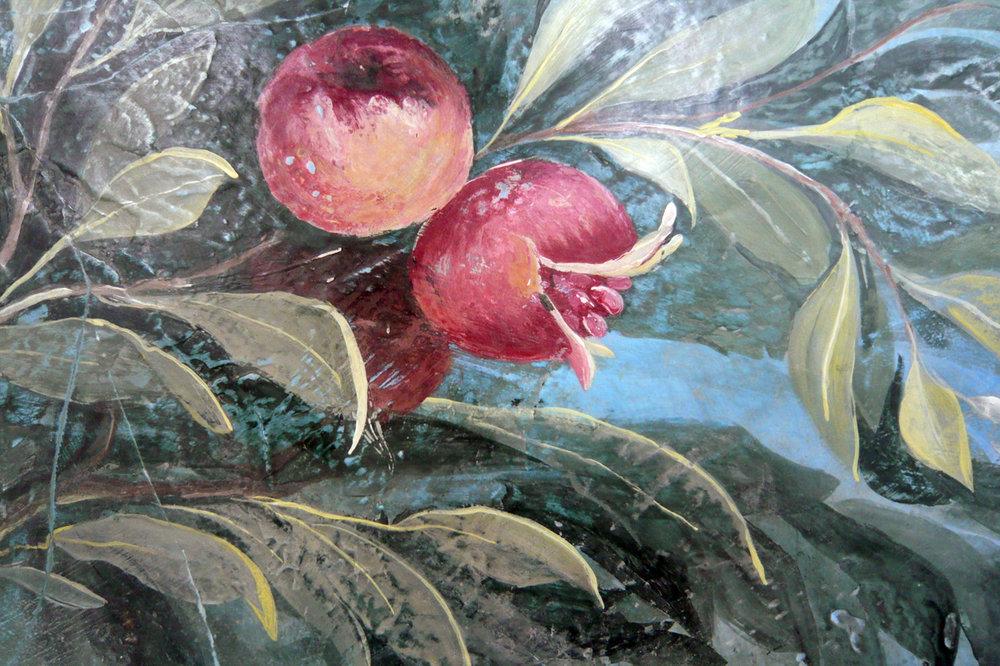 livia_pop_7_pomegranate.JPG