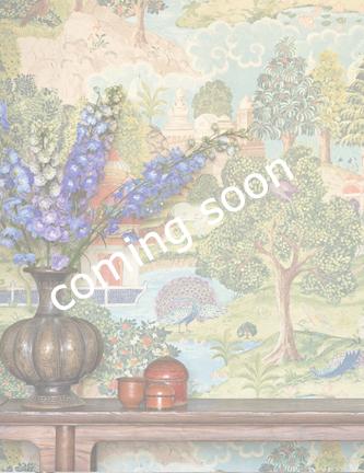 coming_soon_peacock.jpg