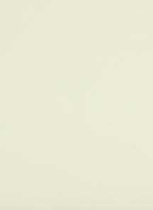 Melamine - Antique White.jpg