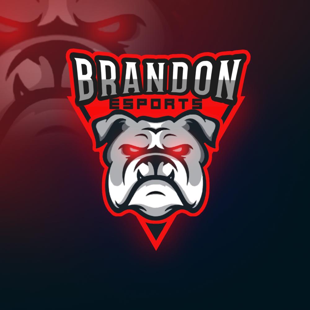 Brandon Esports logo.png