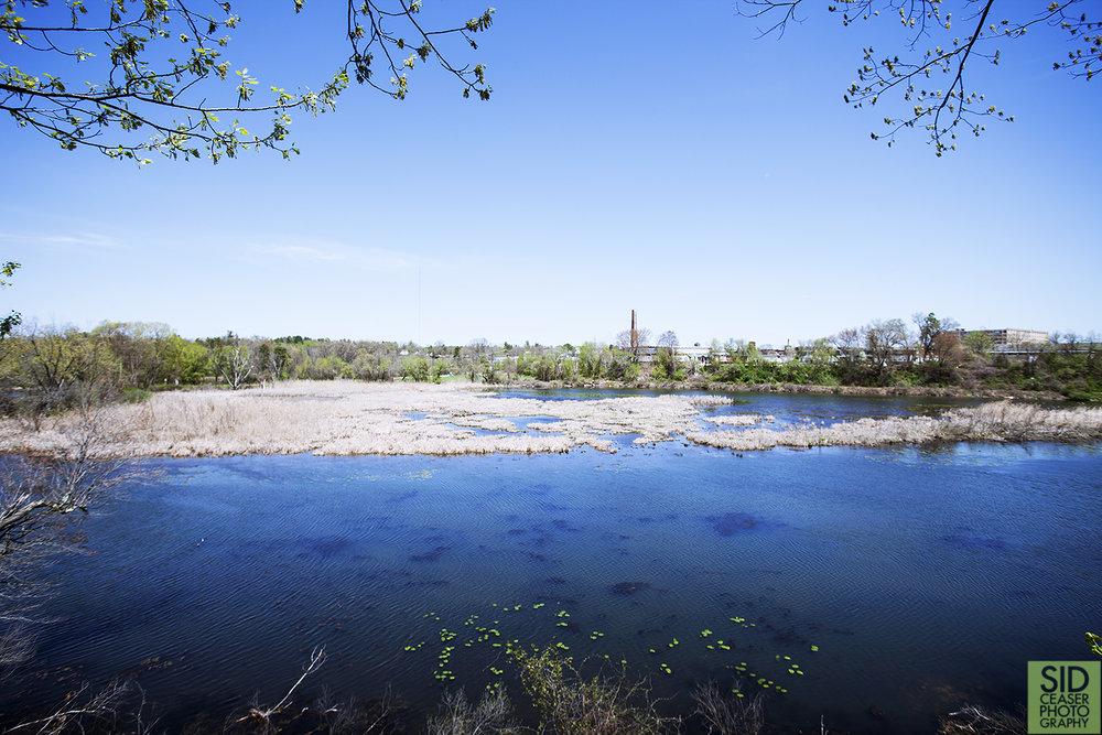 Mine Falls Park in Nashua (located over near my studio!)