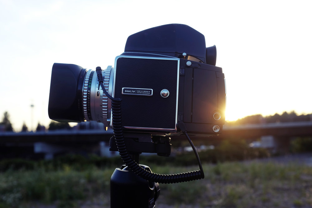 my favorite camera in all the land
