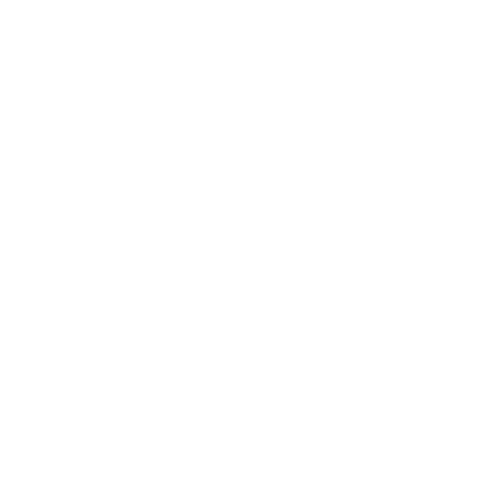 super earlybird ticket.png