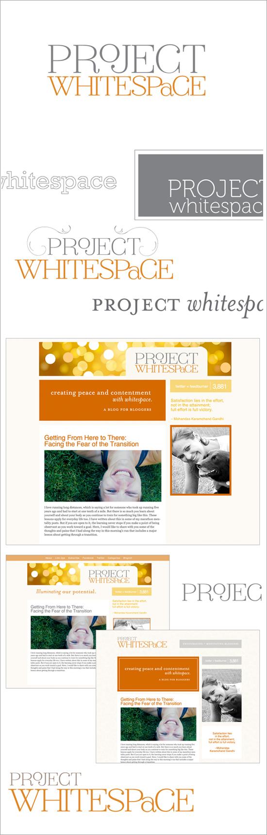 projectwhitespace copy