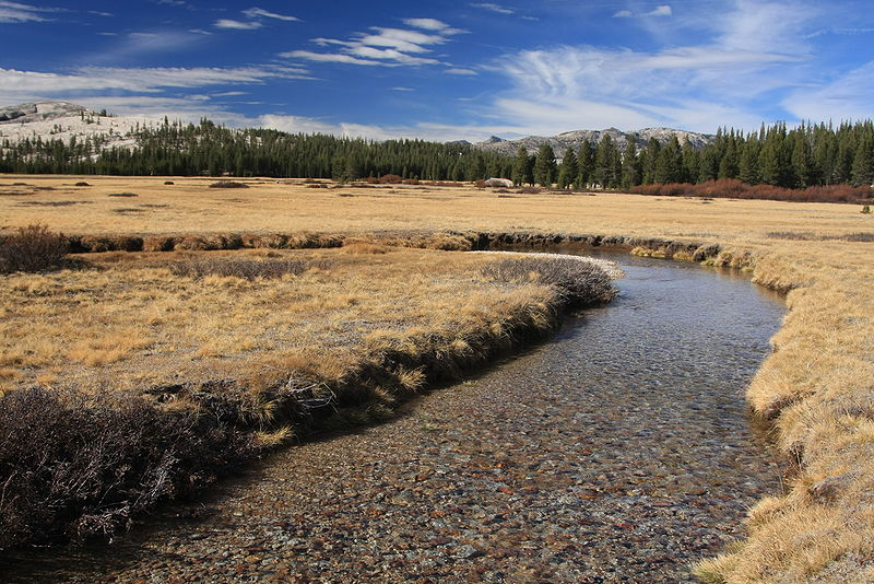 Wingchi Poon-800px-Tuolumne_Meadows_with_Meandering_River_in_Autumn.jpg