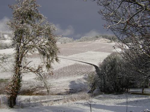 Winter 2006.jpg