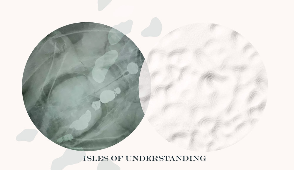Isles of Understanding