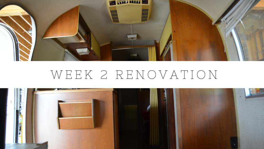 week 2 renovation.png