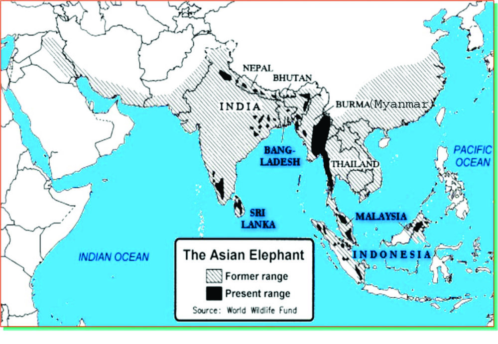 A MAP OF ELEPHANT DISTRIBUTION.jpg