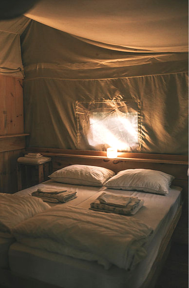 The King Bedroom is the glamping definition of luxury. The bed sits high off the floor with shelves on either side for your personal items. A curtain provides plenty of opportunity for privacy.