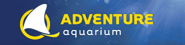 adventure_aquarium02.jpg
