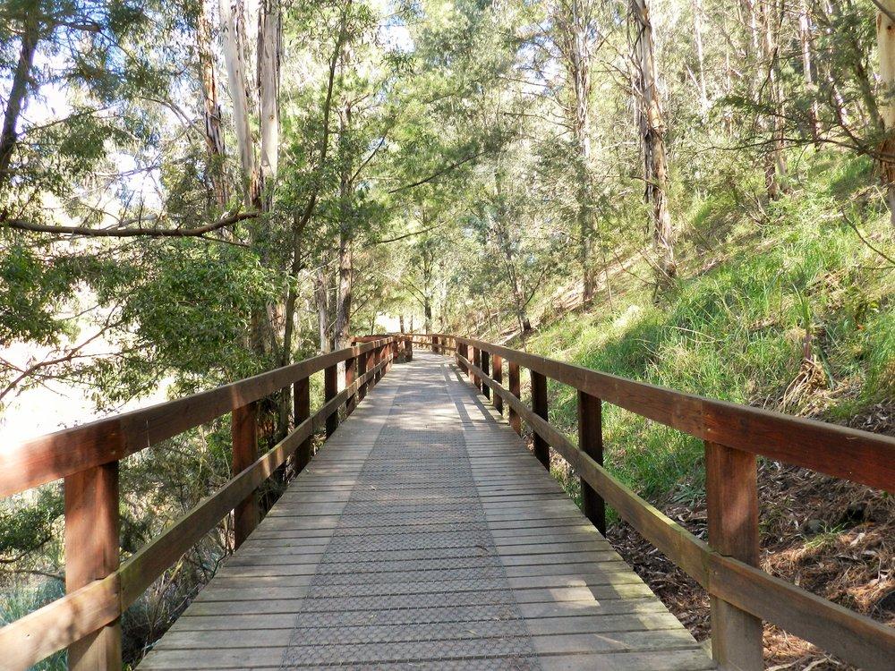 boardwalk-basalt-lake-wilson-botanic-park-wilson-p1.JPG