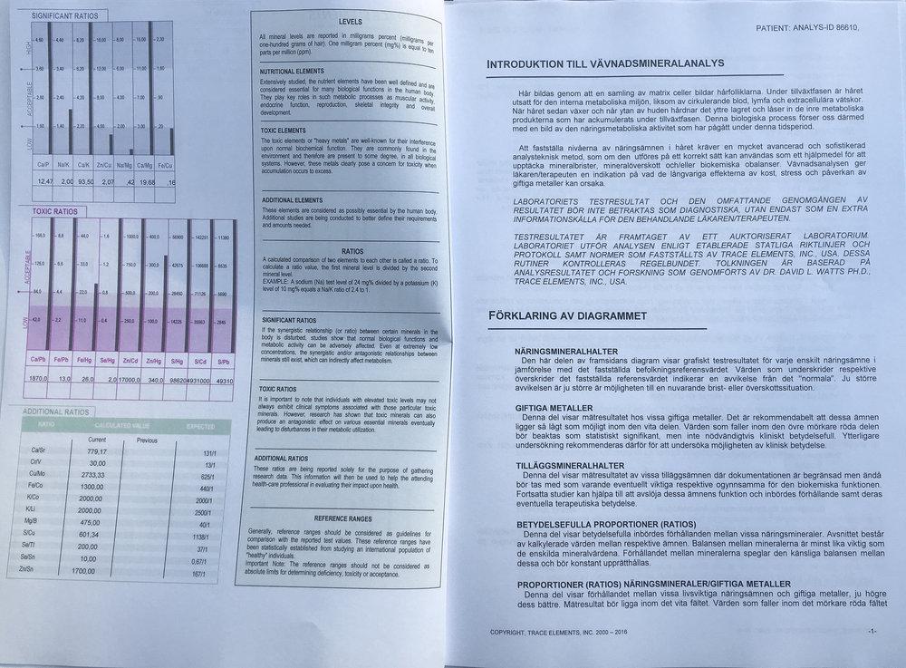 HMA analys.jpg