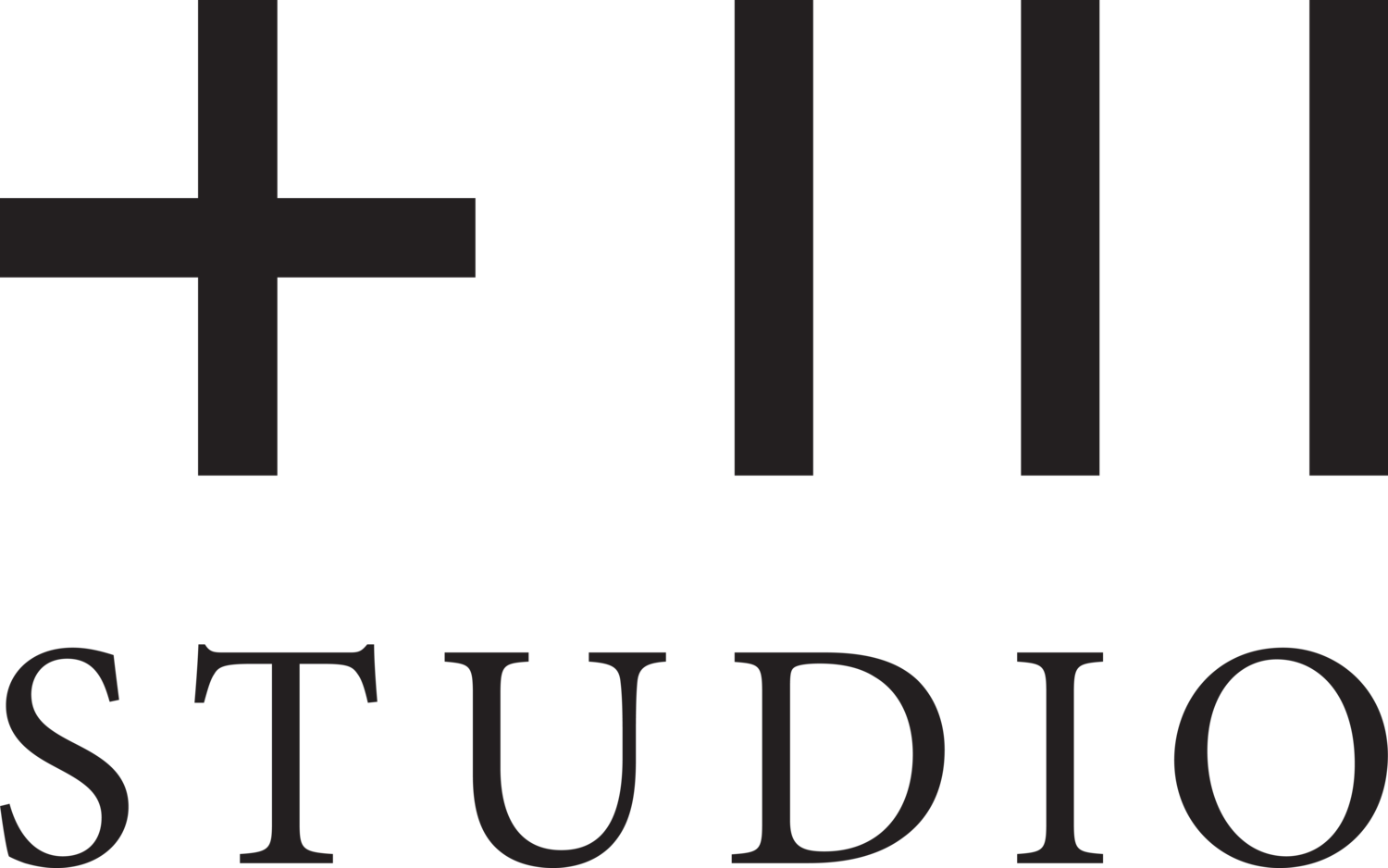PLUS THREE STUDIO LTD