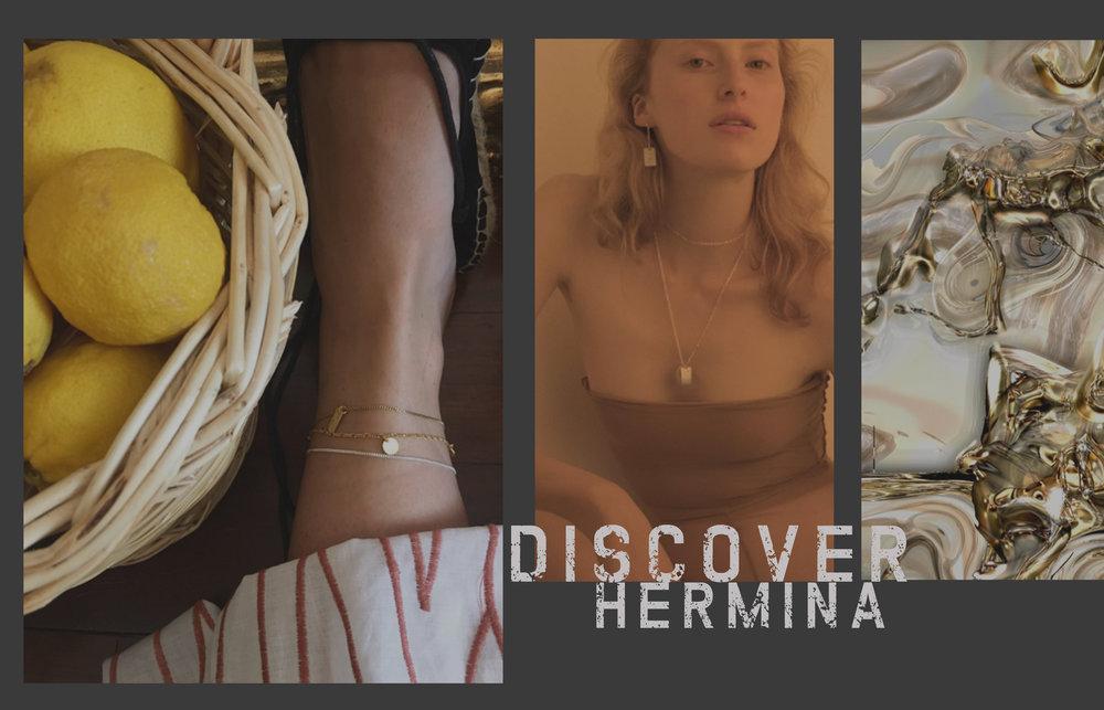discover hermina image.jpg