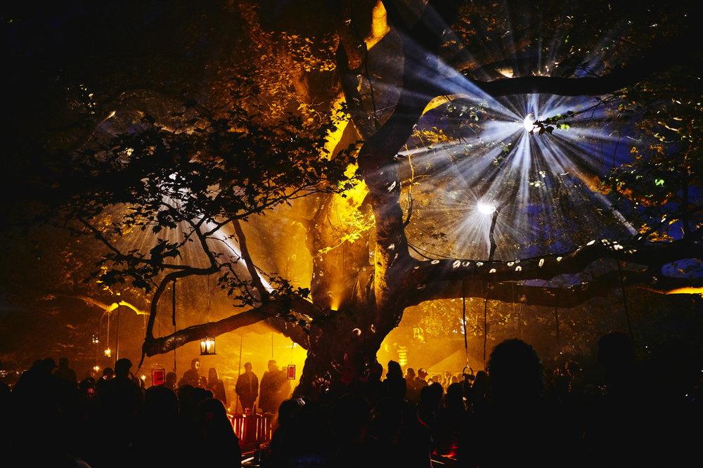 Det magiske træ under Heartland Festival. Foto Erik Cheng.jpg