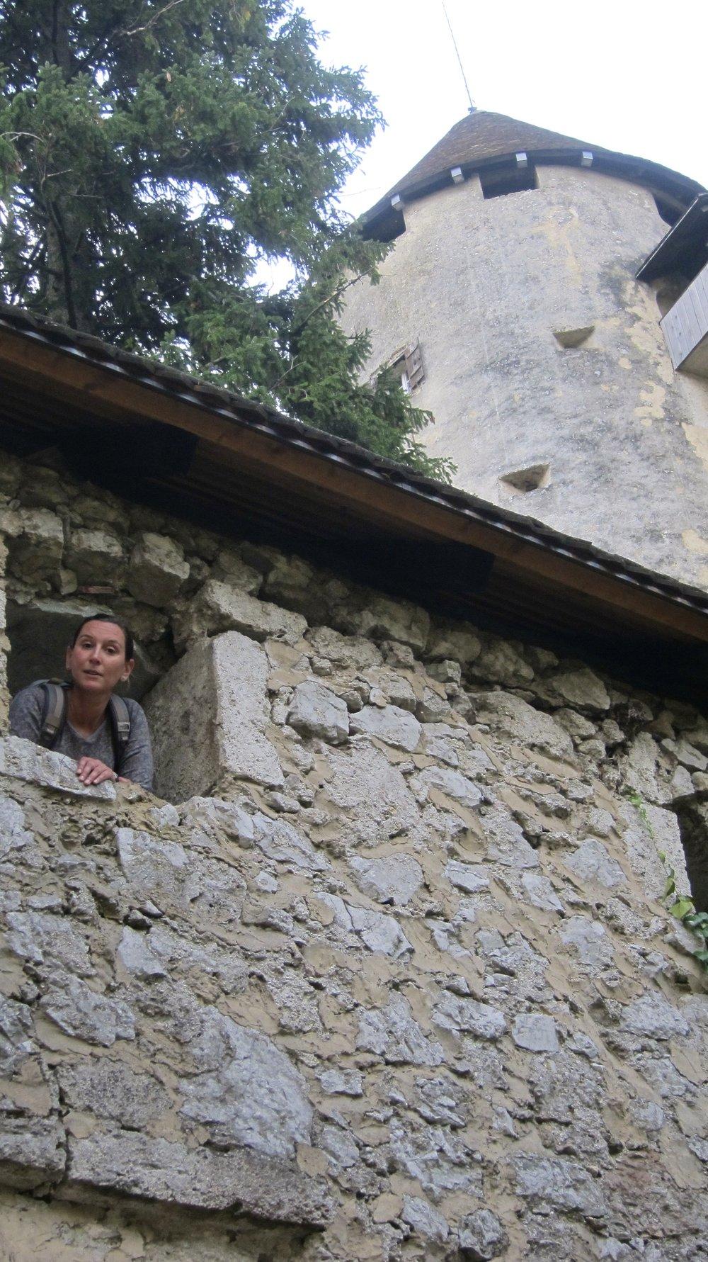 Peeking out the castle walls.