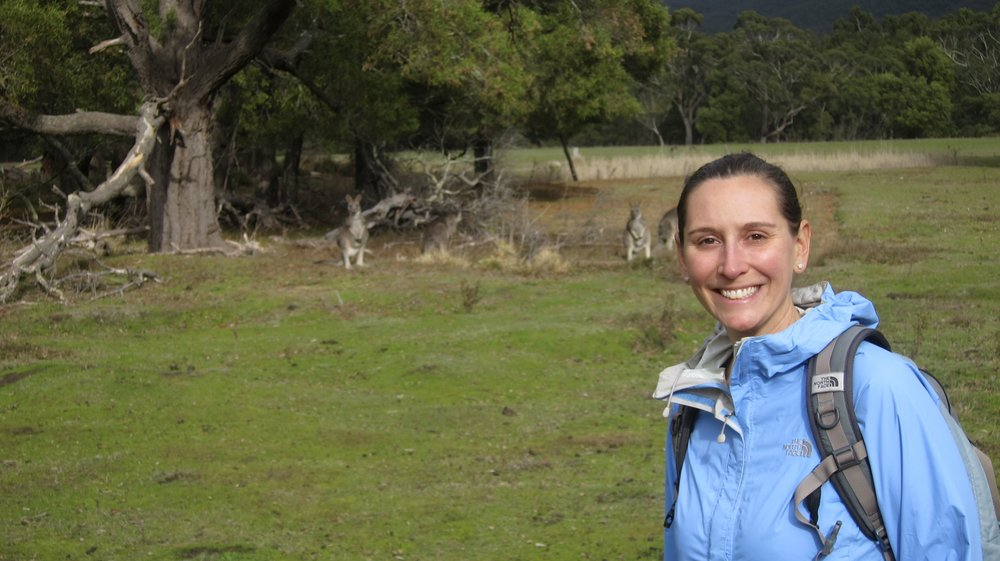 Hanging out with Kangaroos? Who wouldn't want to come back here?