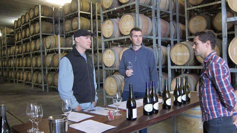 Wine tasting in Yarra Valley.