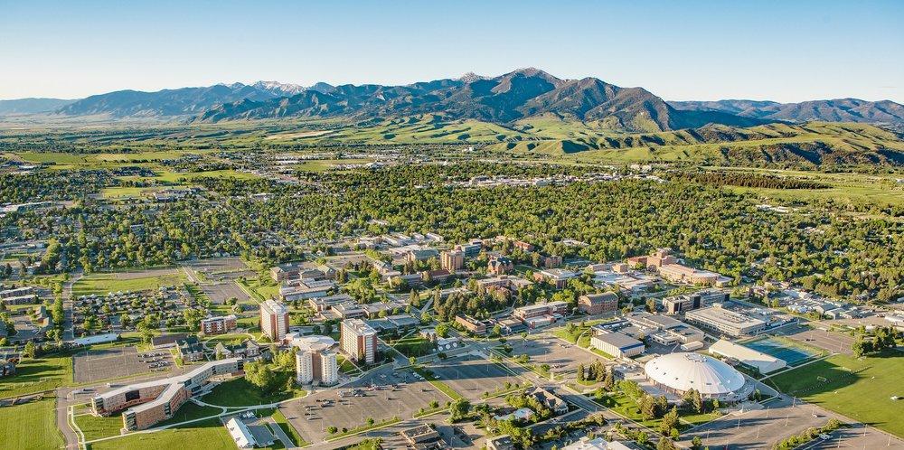 Montana State University - Bozeman, Montana