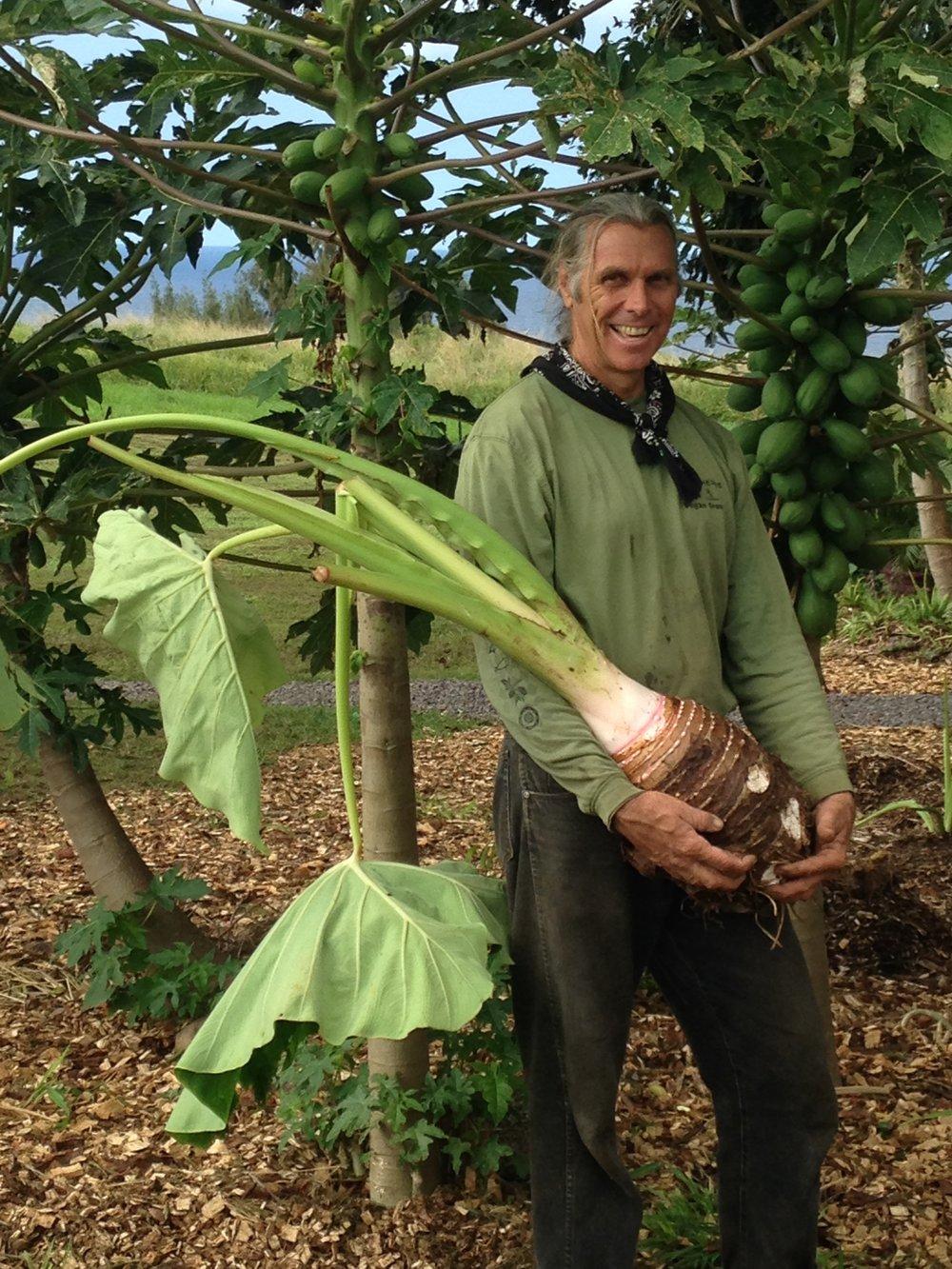 Clarence (Cab) Baber - Co-founder Hawaii Organic Farmers Association (HOFA)