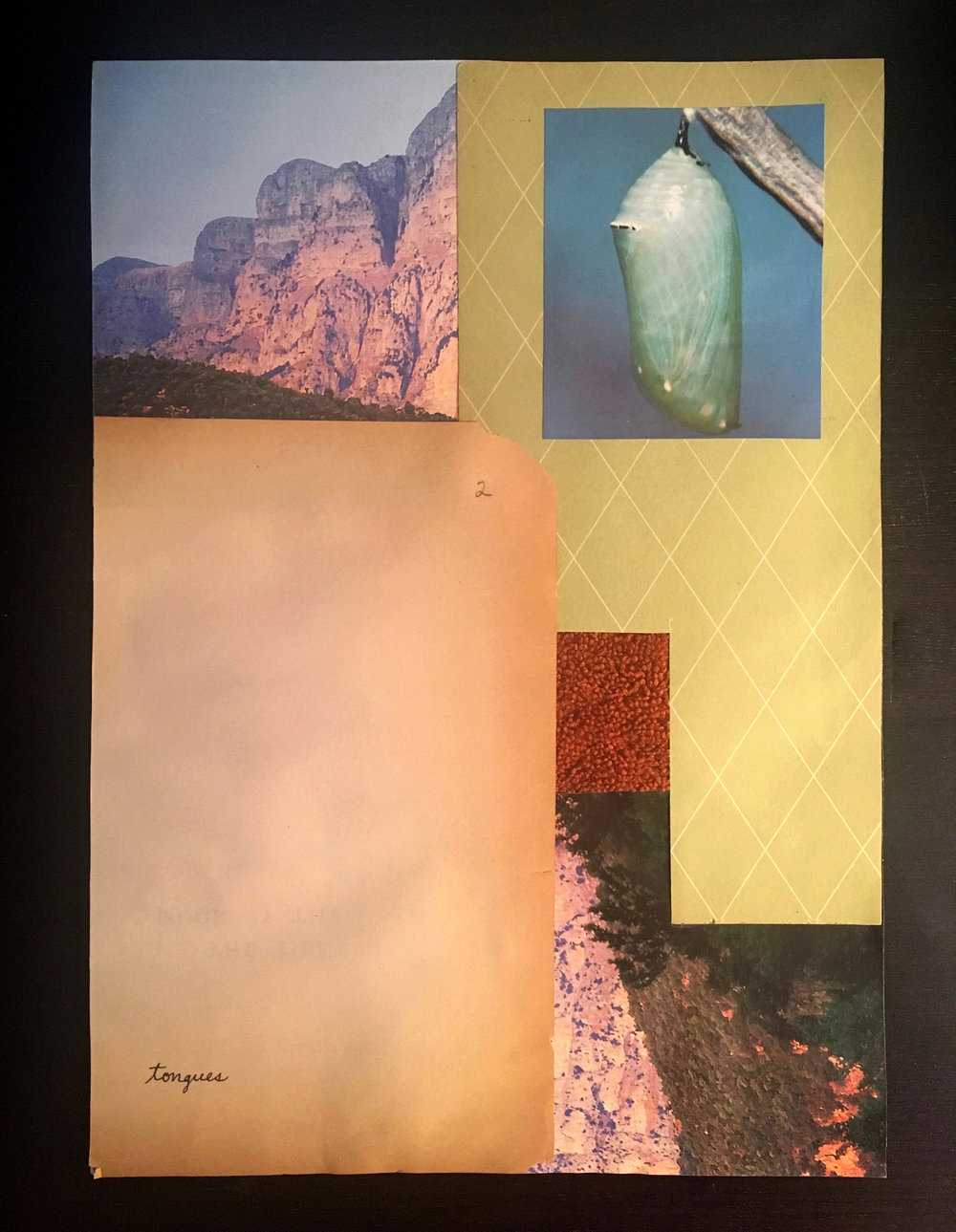 2 Tongues, 2017  Found vintage book paper, found images, cloth 8.5 x 11.5 in