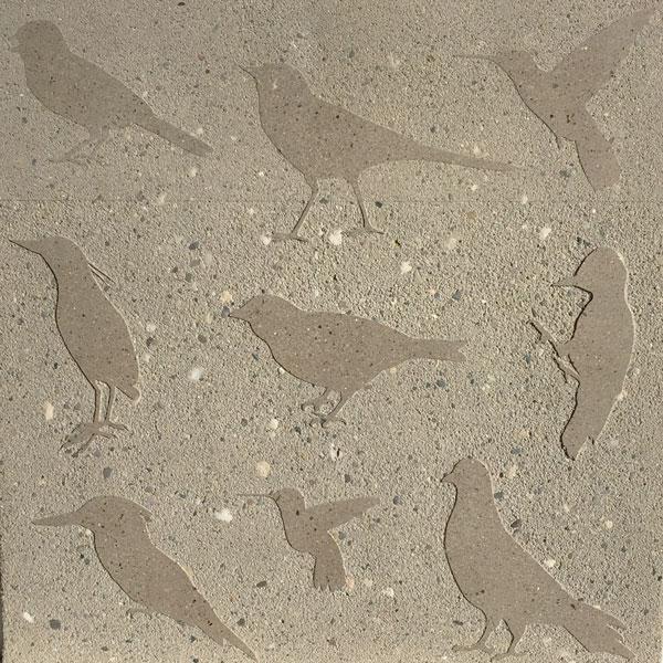 Birds_forweb.jpg
