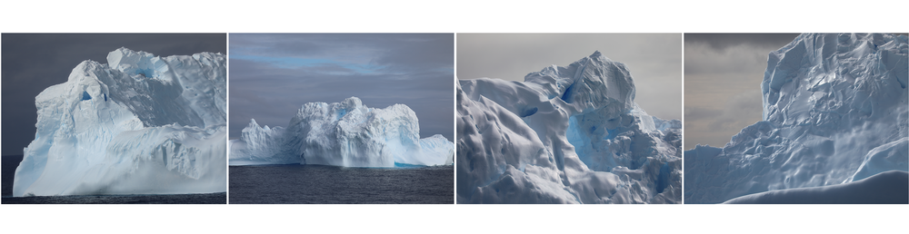 These icebergs which originated from Antarctica may be at least a year old, but their location in warmer waters will melt them very quickly, as much of their rounded surfaces are already showing.