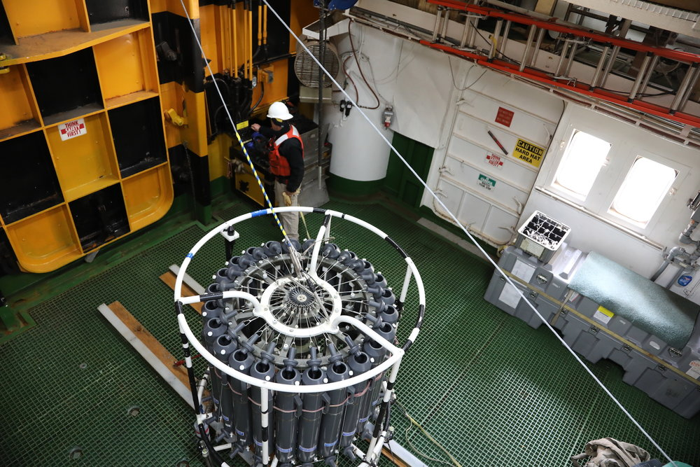 The larger CTD device, also not terribly glamorous, can gather a lot of data in real time, if only in one spot. Its sensors send the information to a computer on the ship all during its trip to the deep. The large gray cannisters are like giant test tubes that can be signaled to open during its passage, sampling the ocean water. Samples can then be used to measure things like chlorophyll (the amounts of which can serve to tell scientists how well the phytoplankton are doing) oxygen in the water. They can also be preserved for future science that will be conducted at land-based laboratories following the cruise. The profiles provided by CTD's have wide application for ocean modeling, and for THOR, the temperature and salinity profiles are used as part of calculating the sound velocity that provides the multibeam sea floor bathymetry data.
