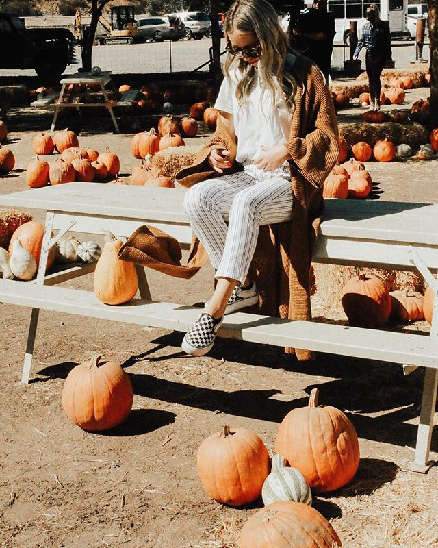 cozy weather, sweaters, anything pumpkin flavored, + pumpkin patches are a few of our favorite things about fall 🍂