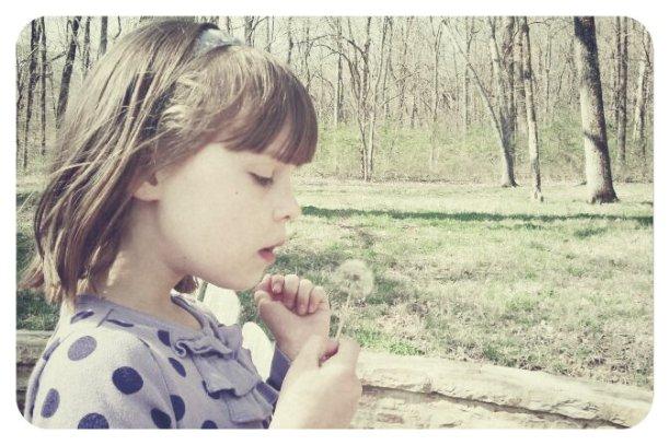 Considering a dandelion. Childhood wonder.