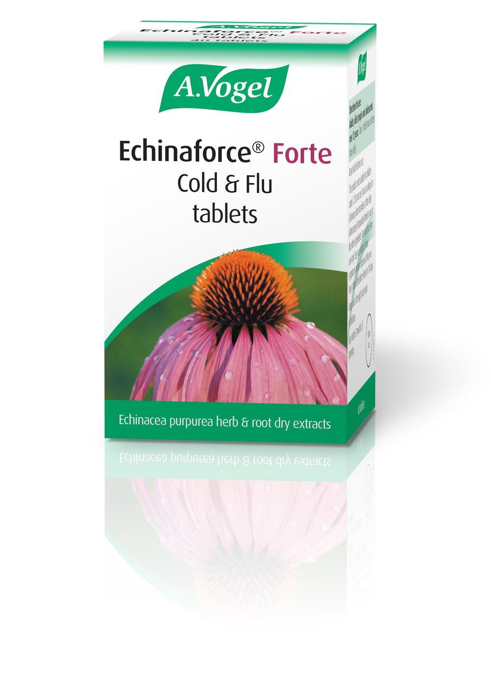 Echinaforce Forte 40 tabs IE.jpg