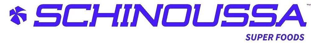 Image result for schinoussa Logo