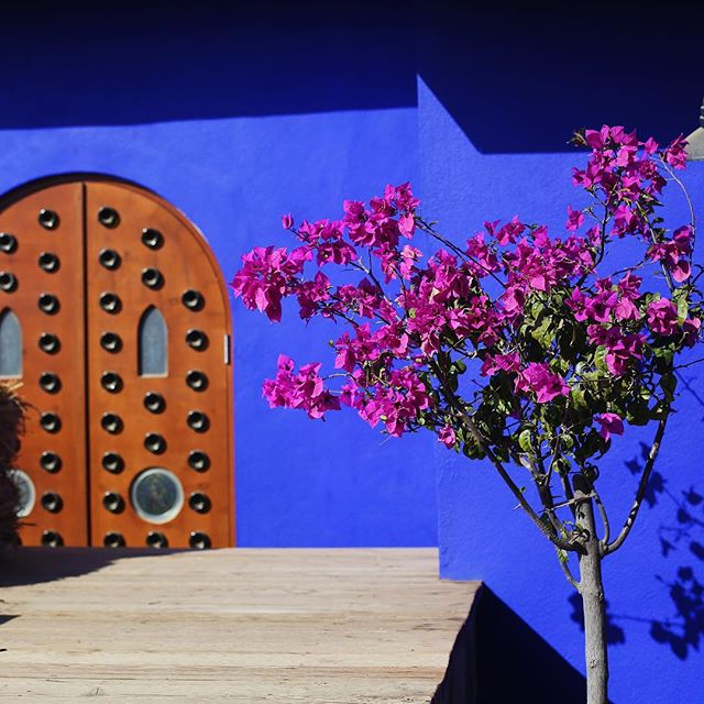 Colors of Mexico (Il of lll)