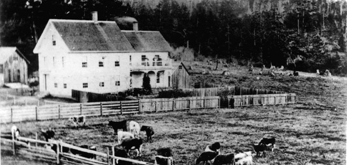 The Farmhouse with cows in the front pasture
