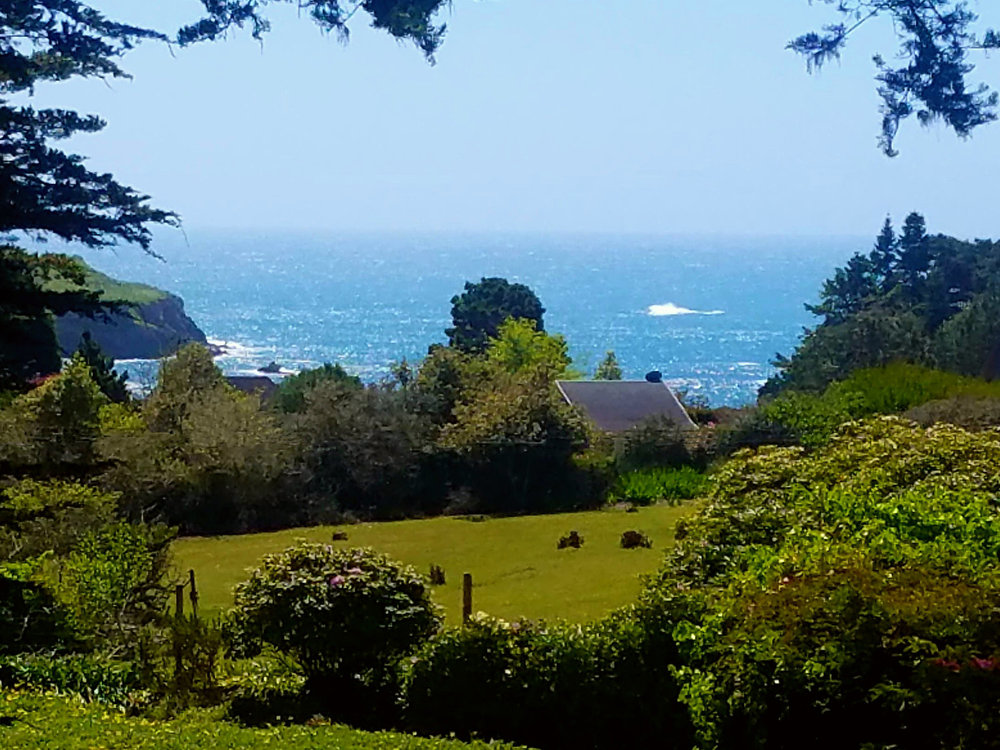 A view of the Pacific Ocean from the Briar Rose room