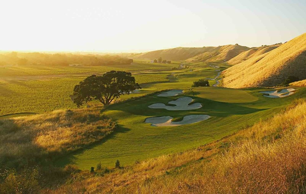 "The Course at Wente Vineyards - Livermore, California - USA"" Public - 18 holeswww.wentevineyards.com"